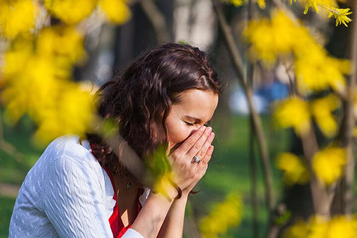 polvo y alergias
