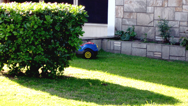 Riego ecológico para tu jardín