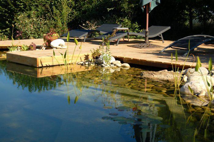 piscinas biologicas
