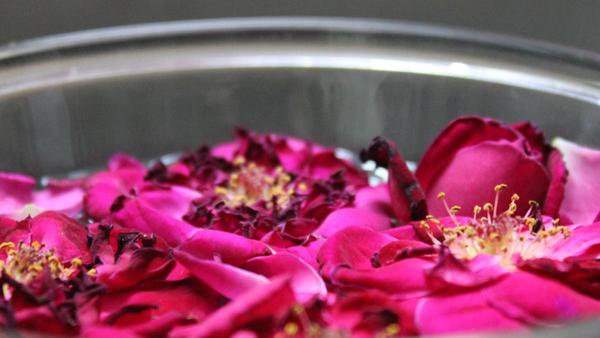 ¿A qué huele tu casa? Elige tu olor ideal