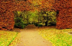 4 jardines asombrosos y sostenibles