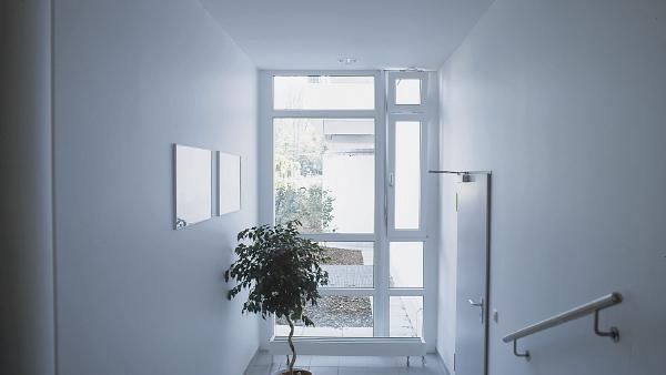 ¿Cómo elegir las ventanas?