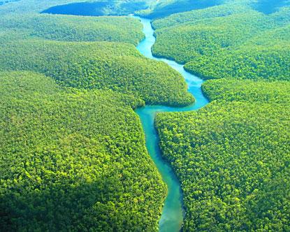 Ecoturismo: el turismo más saludable