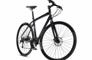 La bicicleta y la movilidad sostenible