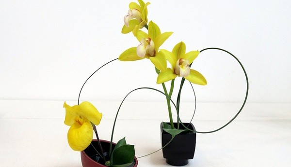 https://www.viviendasaludable.es/wp-content/uploads/2014/09/ikebana-2.jpg