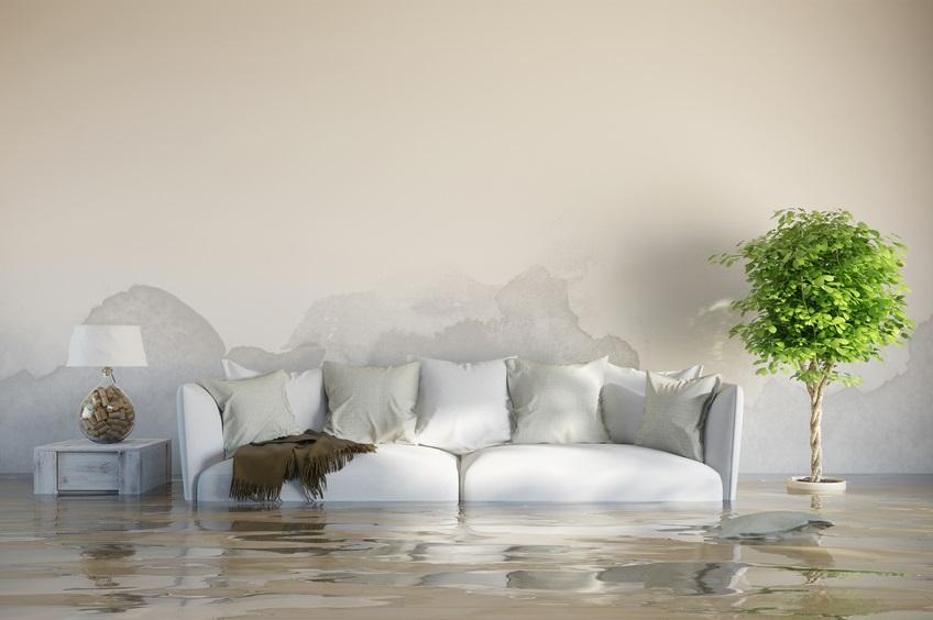 Tipos de humedades vivienda saludable - Como evitar humedades en las paredes ...