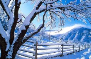 Ahorra en calefacción este invierno
