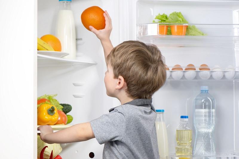 C mo ordenar los productos en la nevera vivienda saludable for Como ordenar la nevera