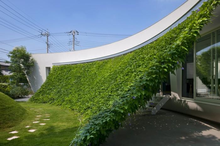 Fachada vegetal vivienda