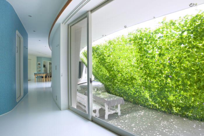 Protección solar de vegetación interior Imagen cte arquitectura