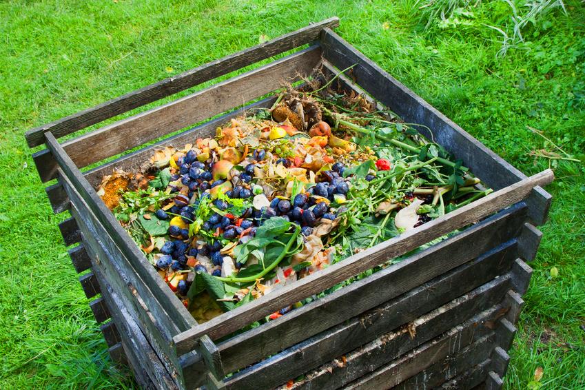 C mo hacer compost casero vivienda saludable - Como hacer compost en casa ...