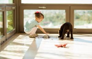 Reciclaje y mascotas