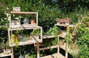 Jardín exterior organizado