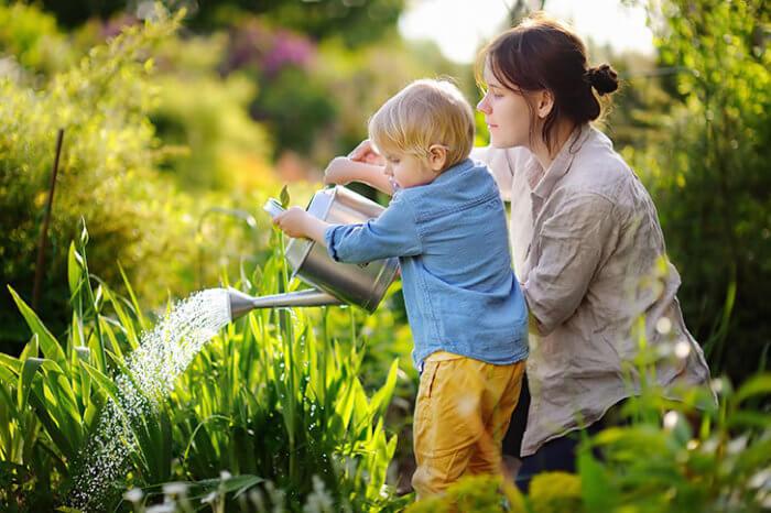 cómo cuidar el jardin en verano