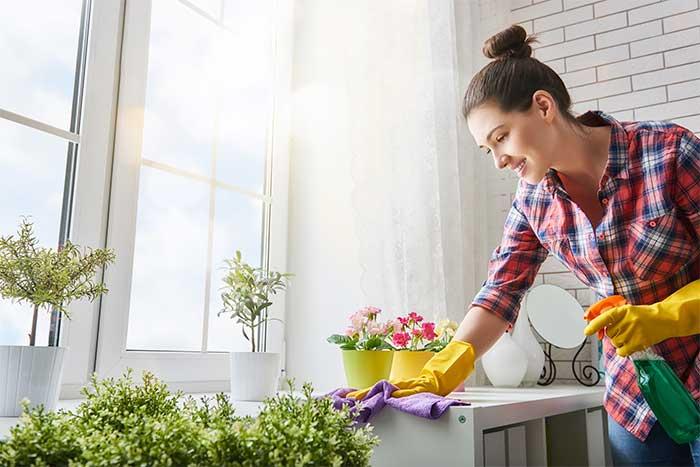 limpieza-ecologica
