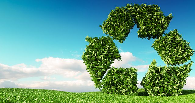 basura orgánica reciclaje