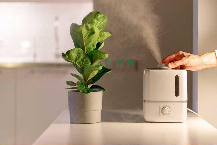eliminar polvo con purificadot
